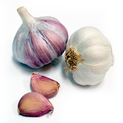 Purple Garlic - Dispaman, garlic growers - Garlic exporters