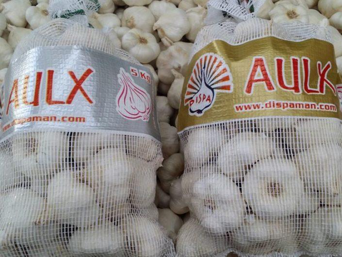 garlic price